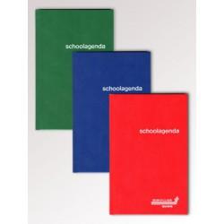 JOURNAUX DE CLASSE, papier sans bois, encollé, Néerlandais - seconadaire, Balacron assortis, 80g/m², 248p, 135x210mm
