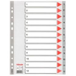 INDEX PP A4 1-12 GRIS